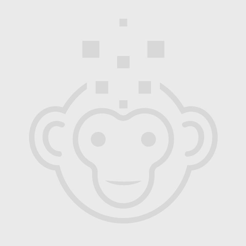 HP ProLiant DL360 Gen9 4-Port - Front